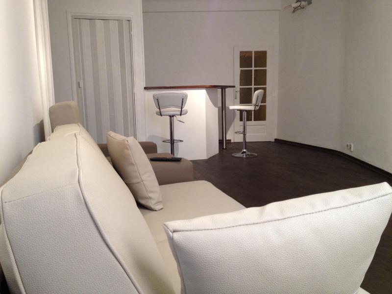 Living room and bar - Renovated, Luxury 2 Bedroom Apartment with Hot Tub and Sauna, Vieux Nice - Nice - rentals