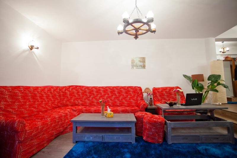 Living room - Apartament Ilinca - Poiana Brasov - rentals