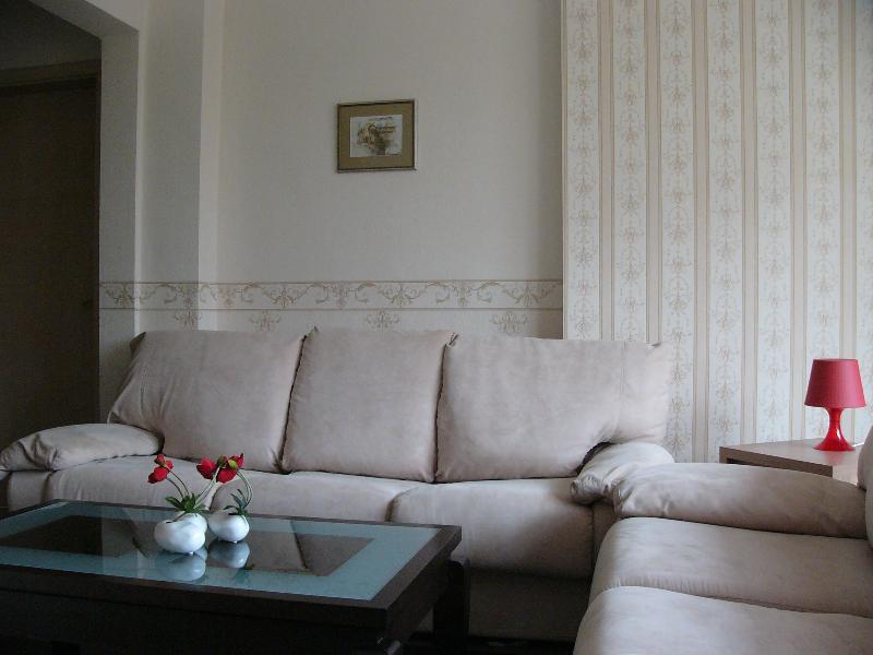 The living room with a sofa - Vip Apartments Sofia - Vitosha Apartment - Sofia - rentals