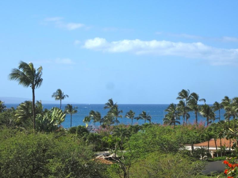 Comfort on a Budget 2-bd/2-ba - Image 1 - Kihei - rentals