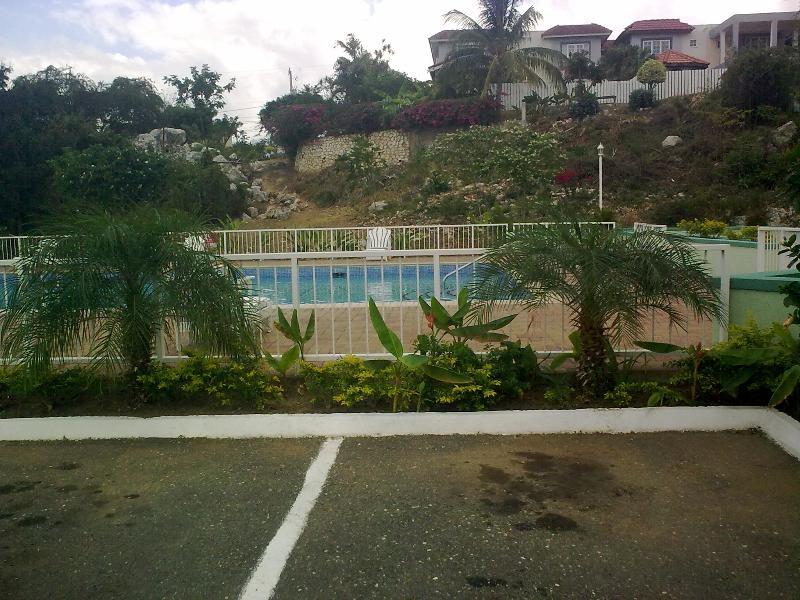 property pool - kingston special - Kingston - rentals