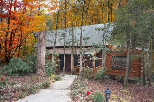 Timber Wolf #5 - Image 1 - Sevierville - rentals