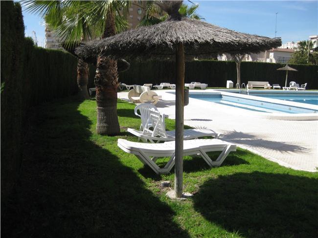 1 Bedroom apartment, Wifi, beach, pool, garden. - Image 1 - Alicante - rentals