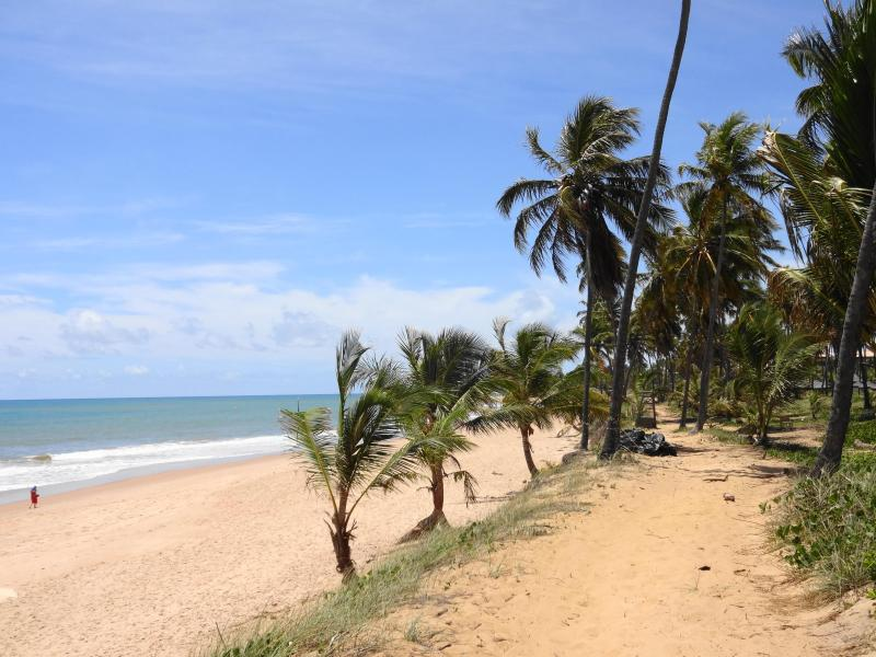 Miles of sandy beaches - Modern and Exclusive Condo with Hotel facilities - Praia do Forte - rentals