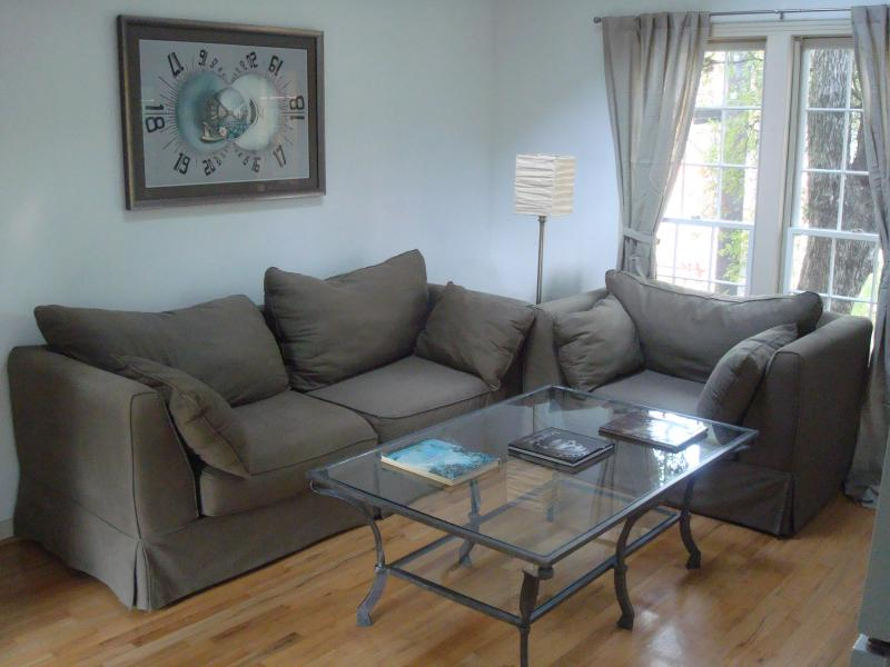 Living Area with Sleeper Sofa - Treehouse Studio Apartment Walking Distance UT - Austin - rentals