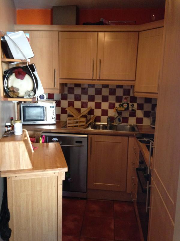 kitchen - Galway  Double Room - Galway - rentals