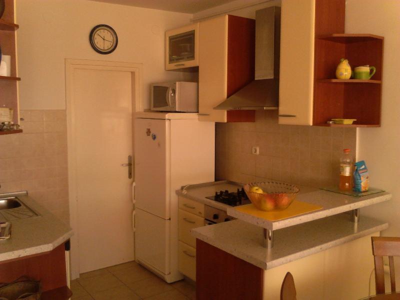 Apartment penthouse Ivan - Image 1 - Split - rentals