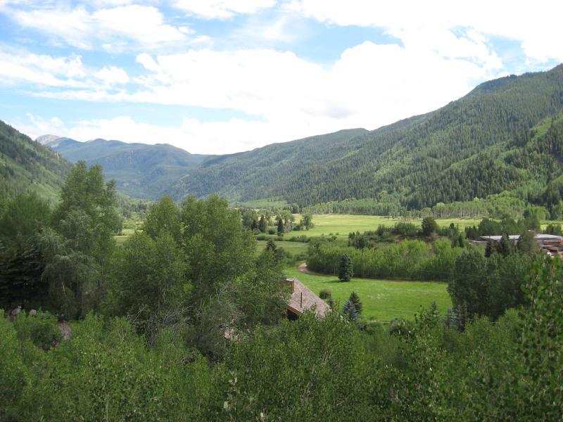 View of Independence Pass from deck - Spectacular Aspen Views - Aspen - rentals