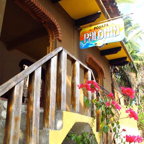 Posada Paloma Studio - Image 1 - San Agustinillo - rentals