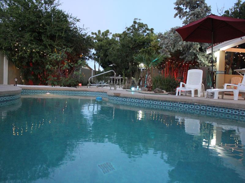 Nature Aruba Deluxe Studio Apartment 1 - Image 1 - Oranjestad - rentals