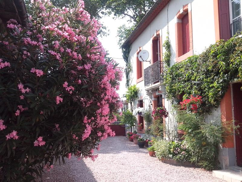 Courtyard - Beautifully converted Barn - Carcassonne - rentals