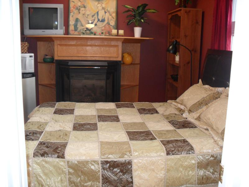 BEDROOM - Furn.bachelor/steps Sq.one/mississauga - Mississauga - rentals