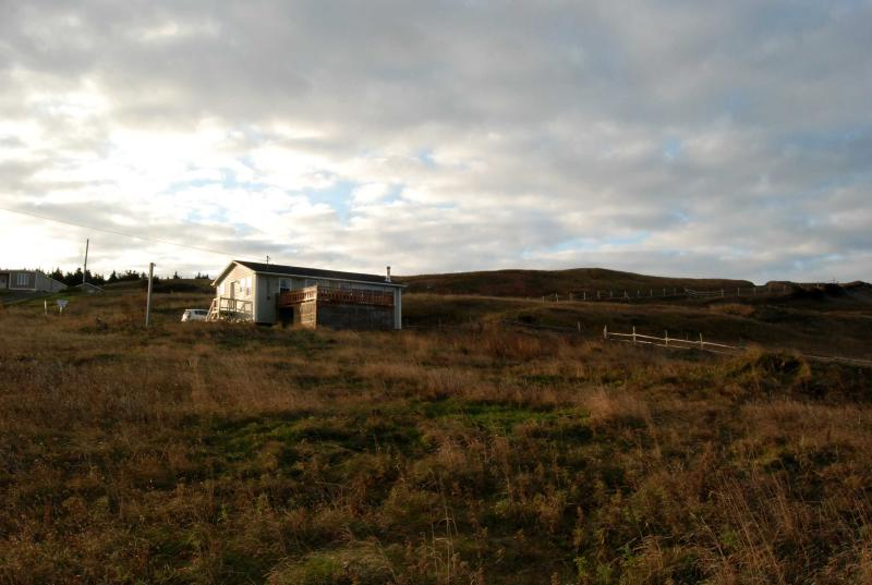 Bayview Heights Cottage - Oceanfront Cottage in Gros Morne National Park - Rocky Harbour - rentals