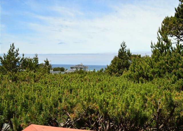 Ocean view - SPINDRIFT in Manzanita OR - Manzanita - rentals