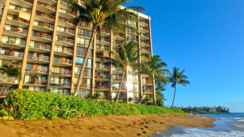 Oceanfront Valley Isle Resort - Valley Isle Resort Oceanfront Studio Condo 606 - Napili-Honokowai - rentals