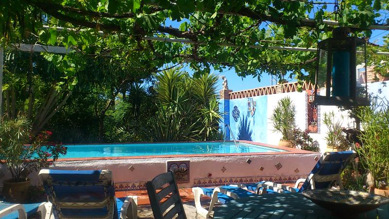 SWIMMING POOL AREA - shared only with guests in Casa Pequeña - EL APARTAMENTO : Private upper floor,Old Farmhouse - Motril - rentals