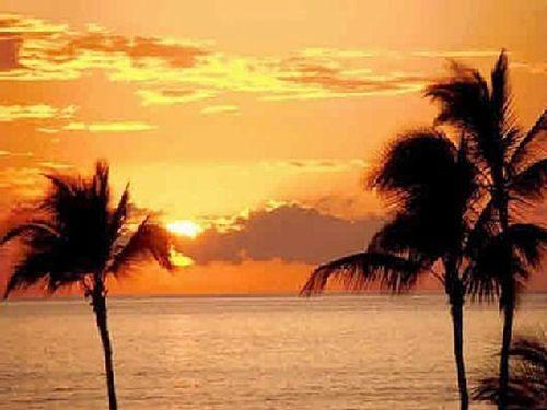 Waikoloa Village Beauty! - Image 1 - Waikoloa - rentals