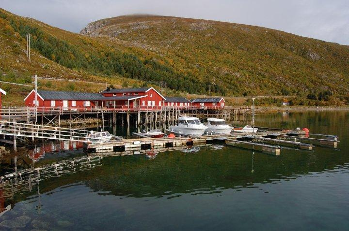 cabin facilities - Fisherman Cabin in the heart of Lofoten Islands - Leknes - rentals
