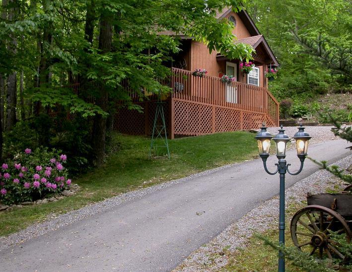 Private Driveway to the cabin. - HONEYMOON CABIN- WIFI-HOT TUB,CREEK $ 675.00 week - Maggie Valley - rentals
