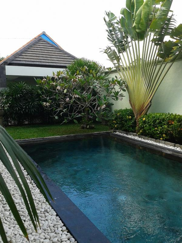 Swimming pool & Garden - Villa Mutiara 300 meters near Berawa Canggu Beach. - Canggu - rentals