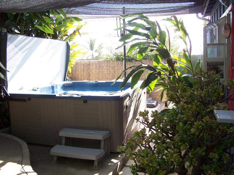 Pet Friendly cottage w/private yard & Jacuzzi/Spa - Image 1 - Encinitas - rentals