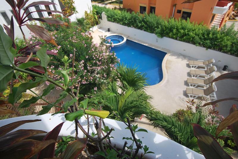 Las Tortugas B1 - Image 1 - Puerto Morelos - rentals