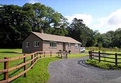 Five Star Pet Friendly Holiday Home - Nantglas, Brechfa Forest  Nr Carmarthen - Image 1 - Carmarthen - rentals