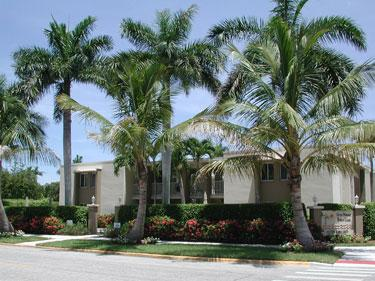 Building - Fifth Avenue Beach Club 106 - Naples - rentals