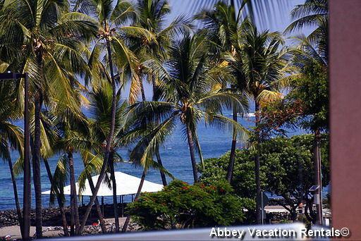 Lovely Condo in Kailua-Kona (K6-KBV 1-203) - Image 1 - Kailua-Kona - rentals