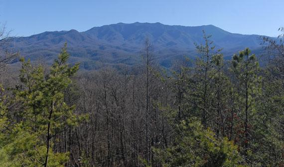 Apparent Seclusion - Image 1 - Gatlinburg - rentals