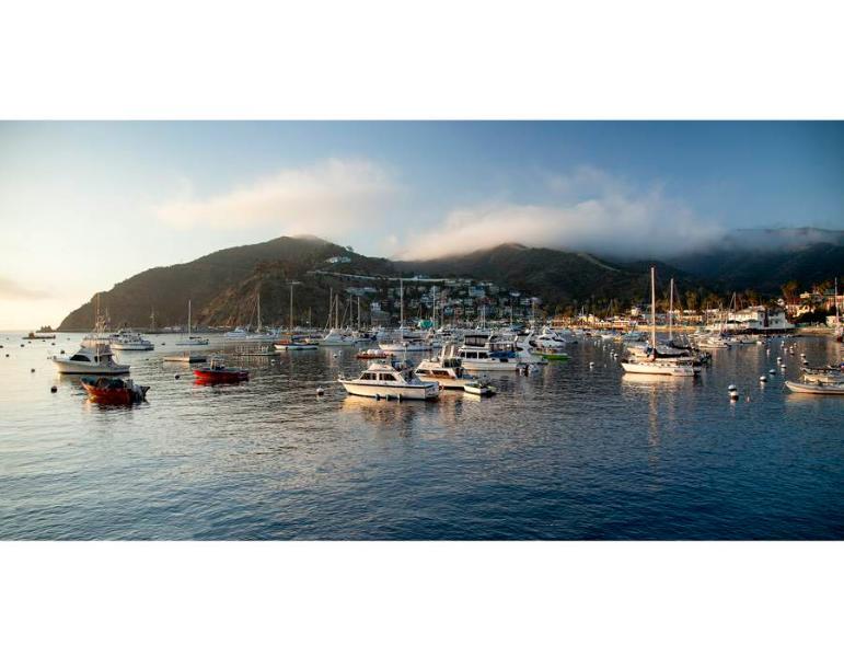 Hamilton Cove Villa 8-97 - Image 1 - Catalina Island - rentals