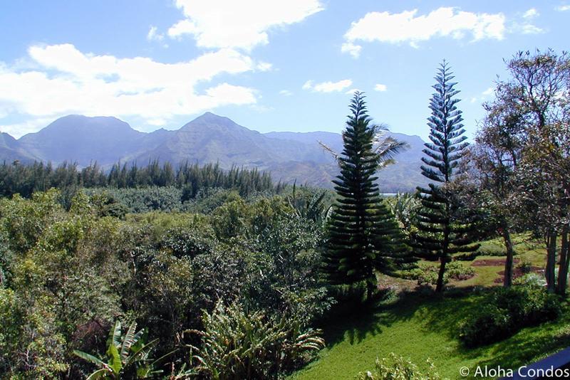 Hanalei Bay Resort, Condo 1557-58 - Image 1 - Princeville - rentals