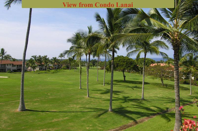 Kona Coast Resort, Condo 2-204 - Image 1 - Kailua-Kona - rentals