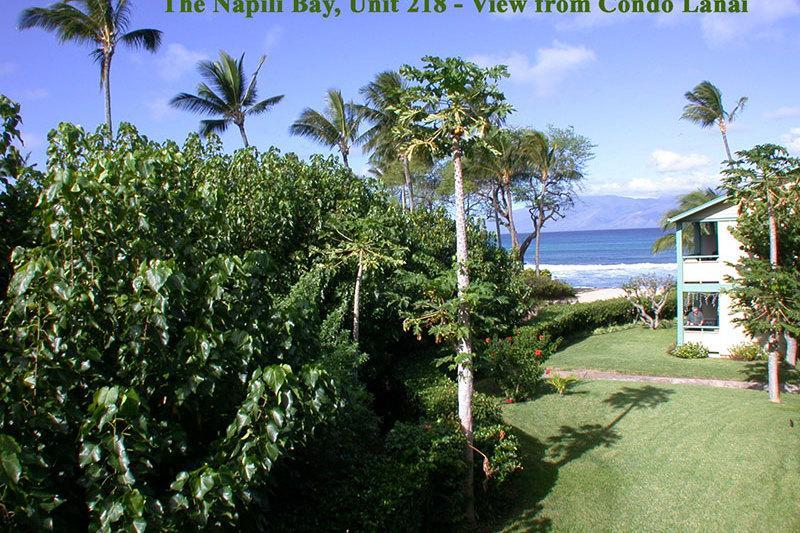 Napili Bay Resort, Condo 218 - Image 1 - Lahaina - rentals