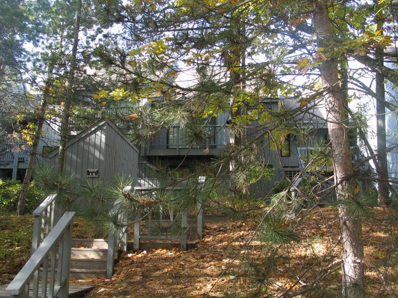 Welcome to Beachwalk 5/6 - Beachwalk 5/6 on Lake Michigan Glen Arbor - Glen Arbor - rentals
