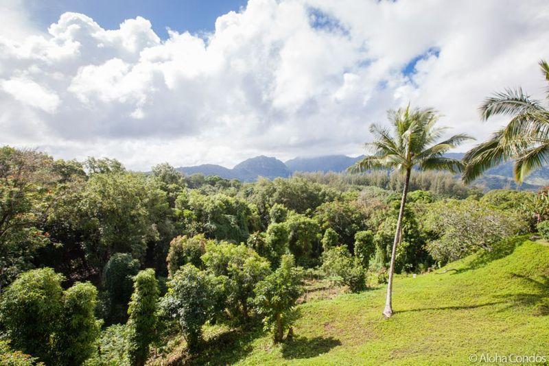 Hanalei Bay Resort, Condo 1525-26 - Image 1 - Princeville - rentals