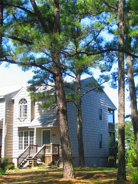 Marsh Point - Image 1 - Chincoteague Island - rentals