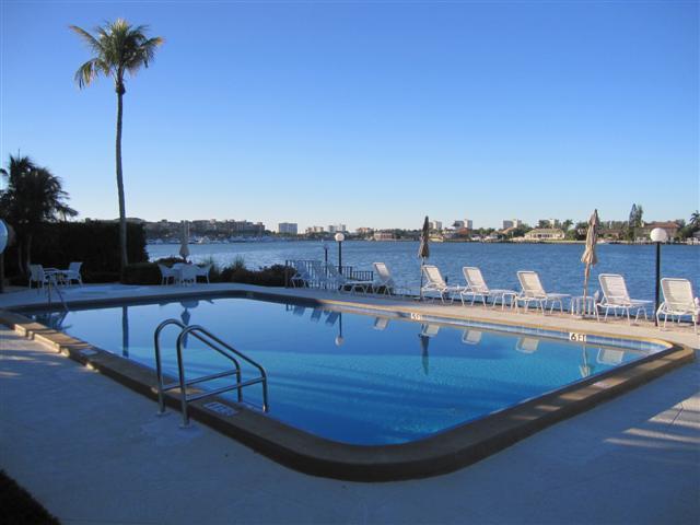 Pool - Bayside207 - Bayside Club - Marco Island - rentals