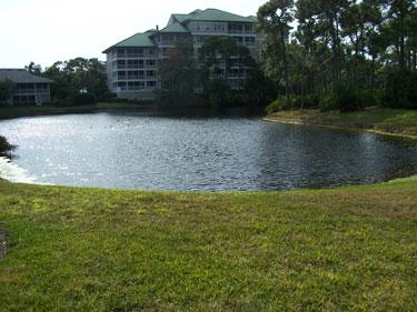 View - Wild Pines in Bonita Bay 109E - Bonita Springs - rentals