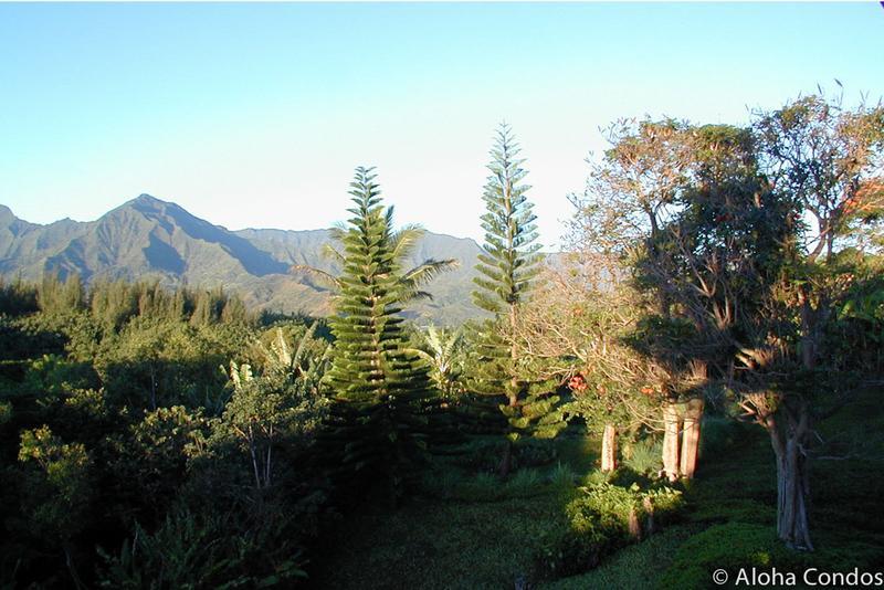 Hanalei Bay Resort, Condo 1558 - Image 1 - Princeville - rentals