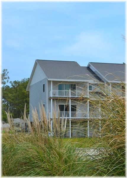 Sand Penny - Image 1 - Chincoteague Island - rentals