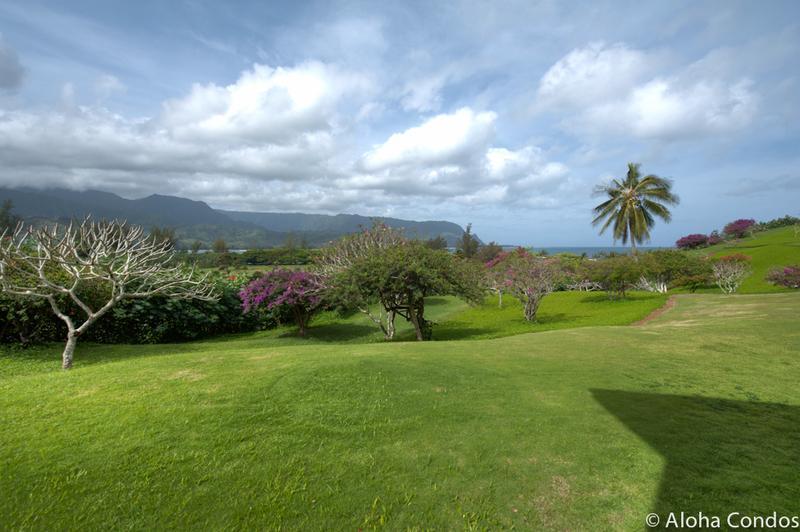 Hanalei Bay Resort, Condo 8102 - Image 1 - Princeville - rentals