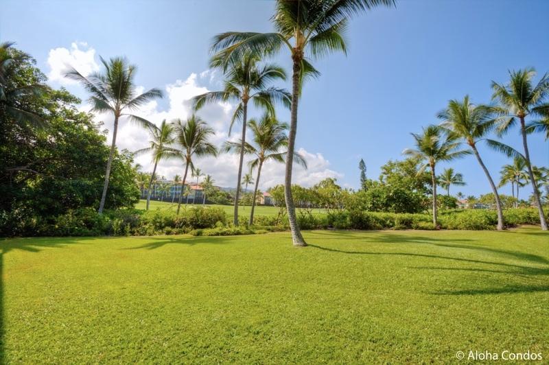 Keauhou Kona Surf and Racquet Club, Condo 7-102 - Image 1 - Kailua-Kona - rentals