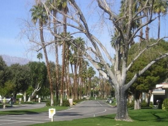 JAL2 - Rancho Las Palmas Country Club - 2 BDRM + DEN, 2 BA - Image 1 - Rancho Mirage - rentals