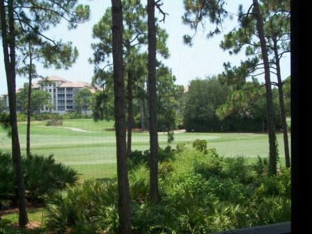Wild Pines in Bonita Bay - BB WP 206D - Image 1 - Bonita Springs - rentals