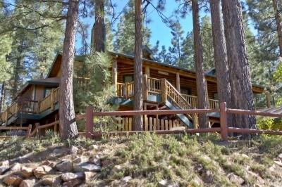Cool Log Cabin - Image 1 - Big Bear Lake - rentals