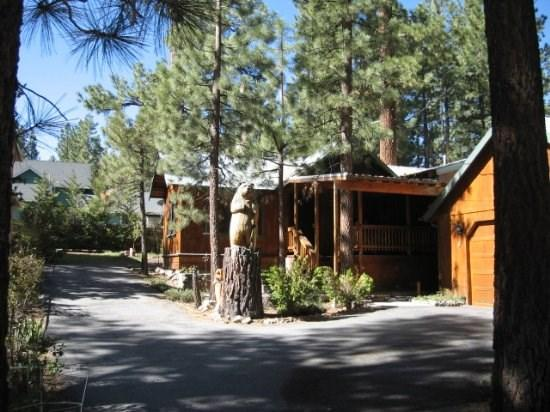 Celtic Bear - Image 1 - Big Bear Lake - rentals