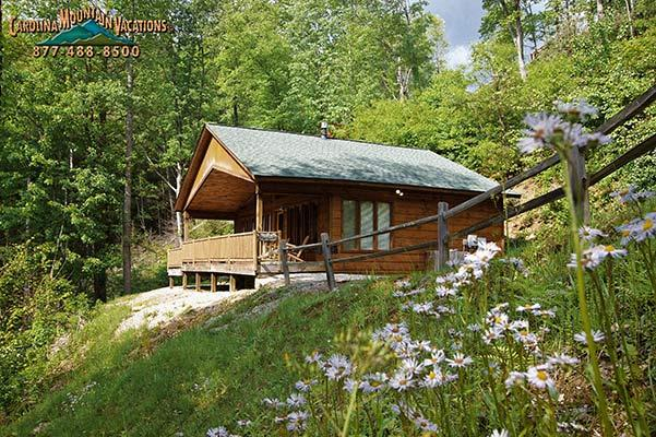 A Tyme to Remember - Image 1 - Bryson City - rentals