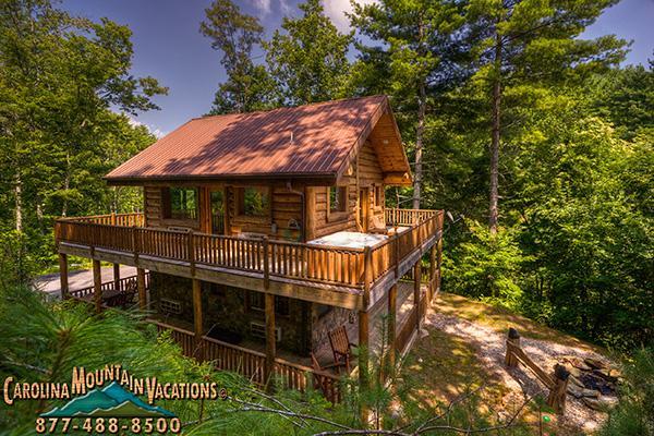 Black Bear Pond Cabin - Image 1 - Bryson City - rentals