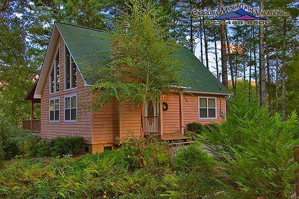 Eagles Nest Cabin - Image 1 - Bryson City - rentals